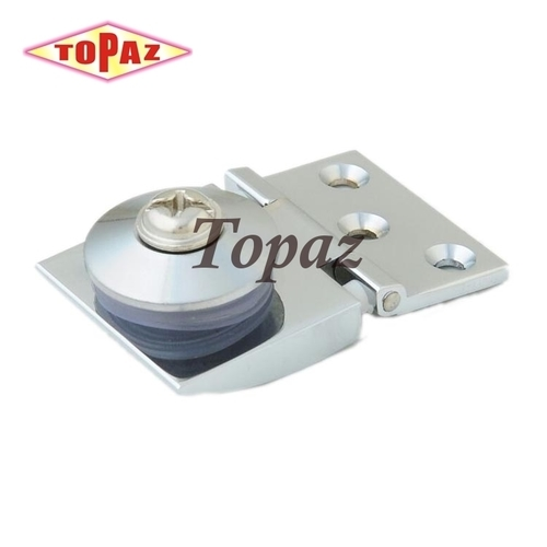 Apple Glass Hinges