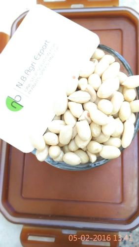 Fresh Roasted Salted Nuts