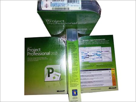 Microsoft Project Professional 2010