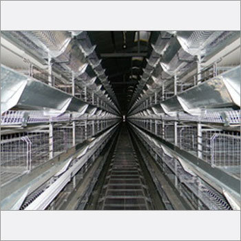 Layer Battery Cages