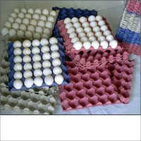 paper egg tray - Wholesalers, Suppliers of paper egg tray