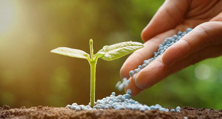 Fertilizers Industry
