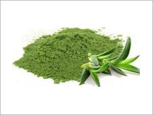 Aloe Vera Leaf Juice Powder