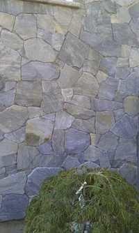 Craze Culture Stone