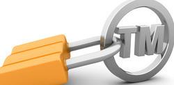 Trademark Litigation Services