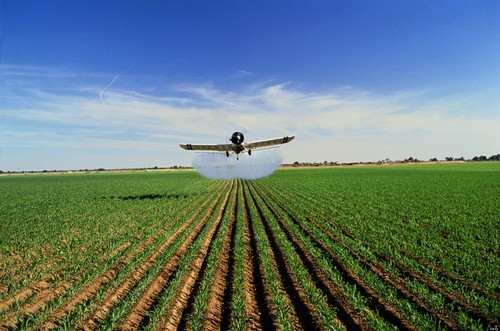 Agricultural Pesticides Testing Services
