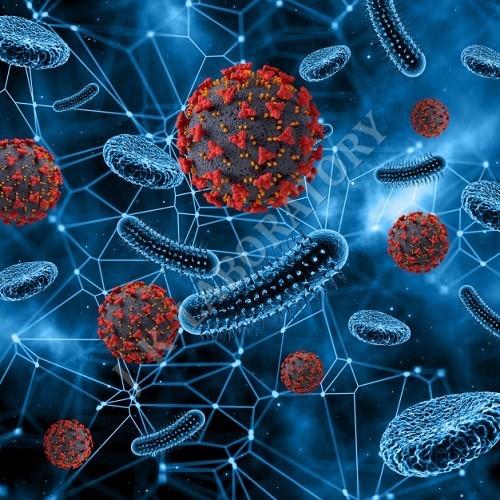 Microbiological Parameter Testing Laboratory
