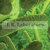 Microbiological Testing Laboratory