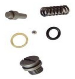 Hydraulic Lift Ram Cylinder Piston Spring Kit