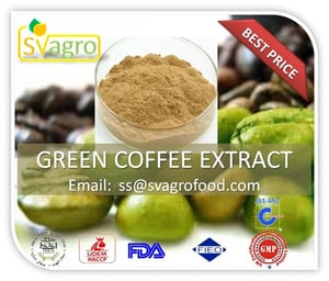 High Quality 100% Natural Plant Extract: Green Coffee Bean