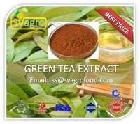 Natural Tea Polyphenols Green Tea Extract