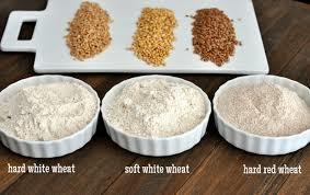 Whole Wheat Grain
