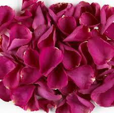 Hydrangea Dark Pink Flower