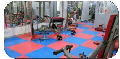 Eva judo Flooring