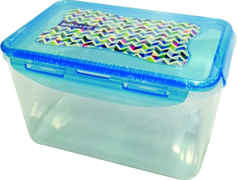Transparent food Container