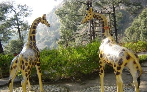 Fibre Giraffe Family