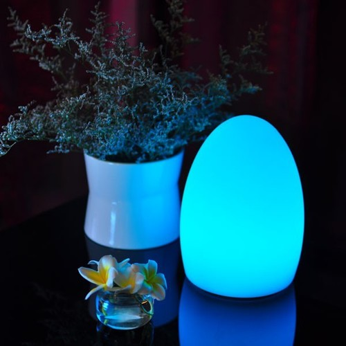 Egg Cordless Lamps