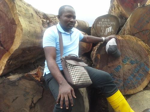 African Padauk Wood Log