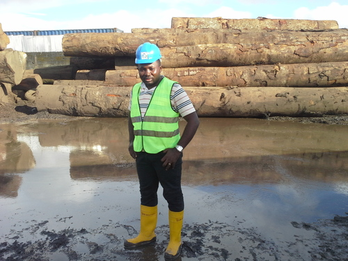 Teak Wood Cutting Log