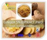 Pure Natural Ginger P.e. 5% 10:1 Ginger Extract
