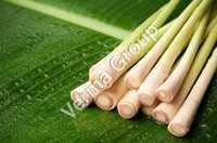 Wild Crafted Lemongrass