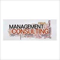 Management Consultancy Services