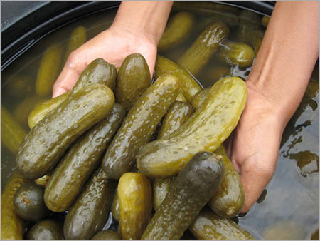 Gherkins in Salt Brine