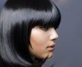 Wholesaler of Hair Dye - Indigofera Tinctoria / In