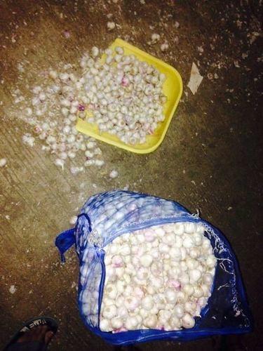 Garlic Packing Bags