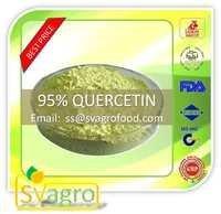 Sophara Japanica 95% Quercetin