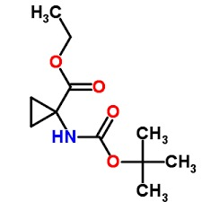(1R,2S)-2-Ethenyl-1-[[[(1R,2R,4S)-2-[(5-hexen-1-y