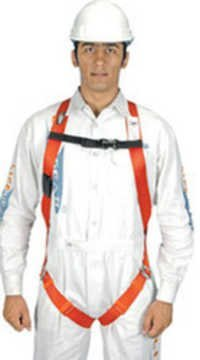 Lifegear Harness 1