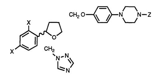 (4-[1,2,4] Triazol-1-yl methyl phenyl) hydrazine