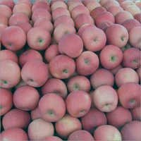 Red Fuji Apples