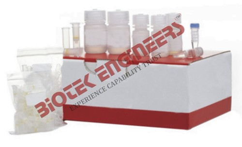 DNA ISOLATION KIT