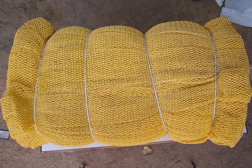 PP Nets