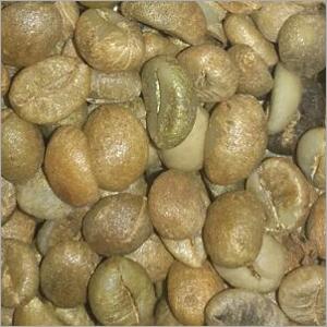 Organic Robusta Coffee Bean