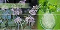 L Menthol 90%DESCRIPTION: Menthol is an organic co