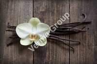 Vanilla Extract Oleoresin