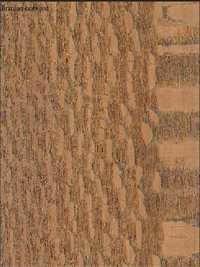 Brazilian-lacewood Veneers