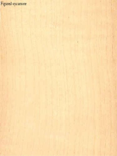 Figured-Sycamore Veneers