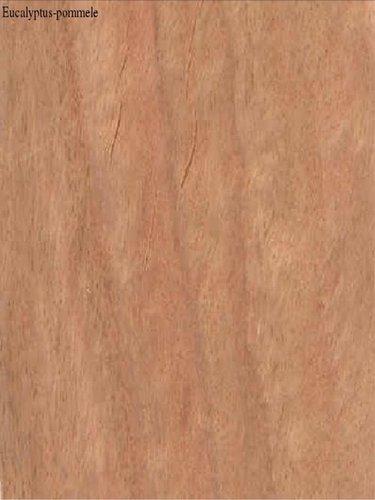 Eucalyptus-Pommele Veneers