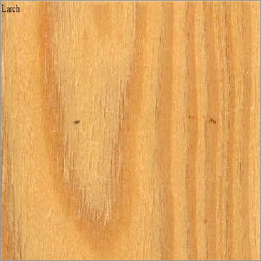 Larch Veneers