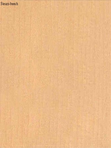 Steam Beech Veneers