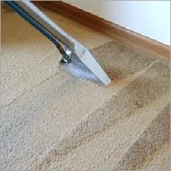 Carpet Maintenance Service