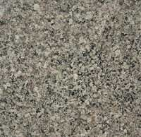 Desert Green Granite Slab