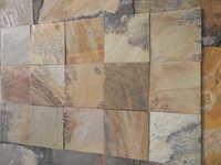 Fossil Sanstone