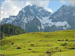 Kashmir Botanical Garden Tour Packages