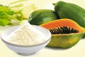 Papaya Juice Pulp Powder