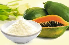 Papaya Juice Pulp Powder